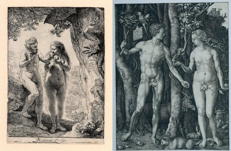 Rembrandt, De zondeval van Adam en Eva, 1638 (Museum Het Rembrandthuis, Amsterdam) en Albrecht Dürer, Adam en Eva, 1504 (Rijksmuseum, Amsterdam).